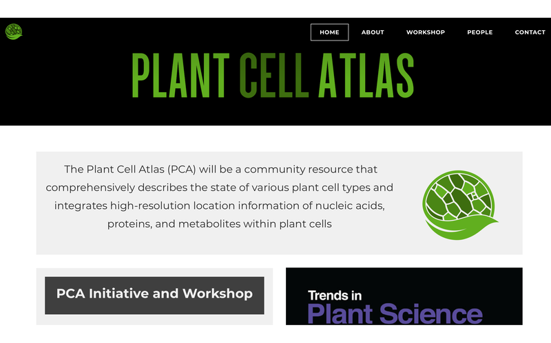 plant cell atlas